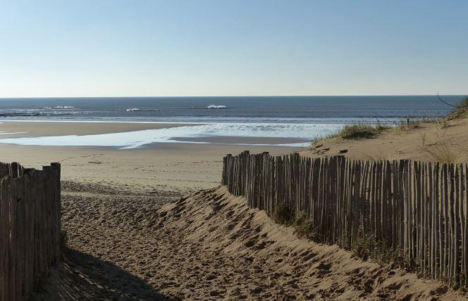 Camping aux Sables-d'Olonne ou Brem-sur-Mer : quid de la gastronomie en Vendée ?